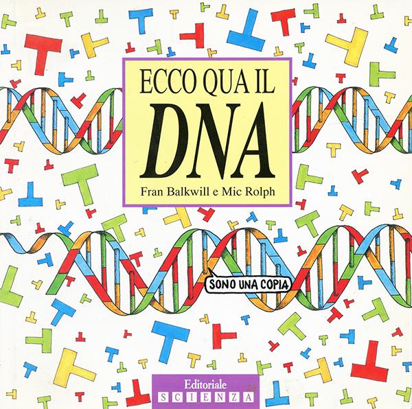 ecco qua il DNA
